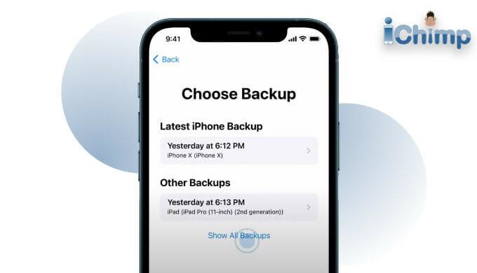 iPhone choose backup