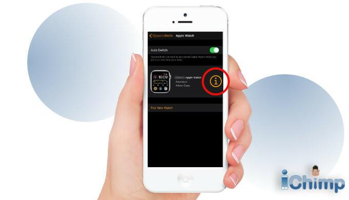 apple watch info