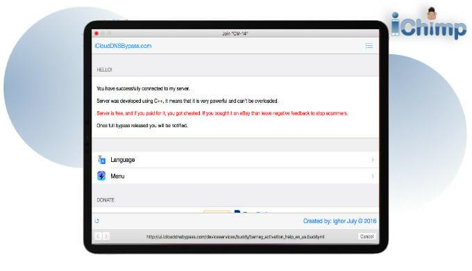 iCloud DNS bypass screen