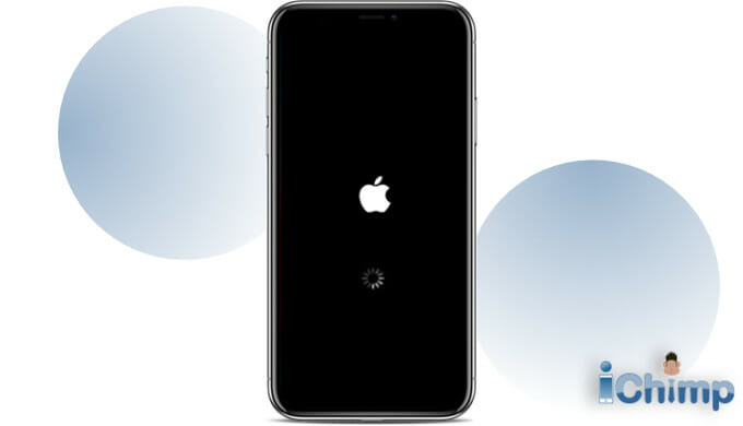 How To Fix iPhone Black Screen Of Death Issue